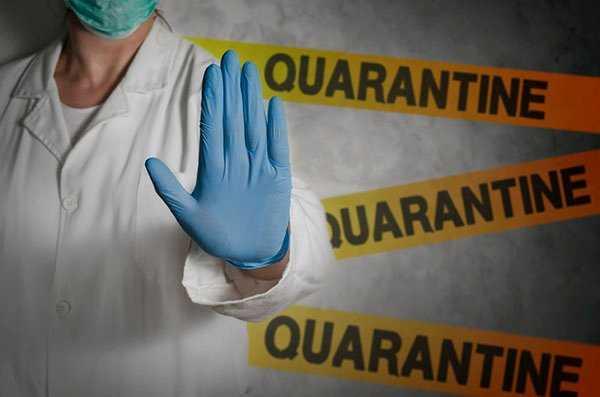 5 solusi hec1 self quarantine